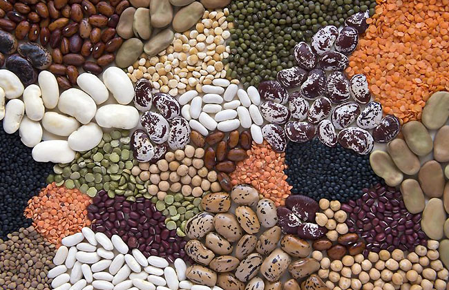 Black Beans Benefits Weight Loss