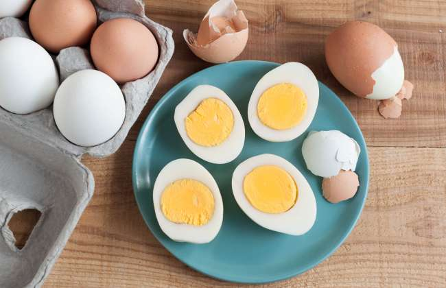 Egg Diet Weight Loss Results