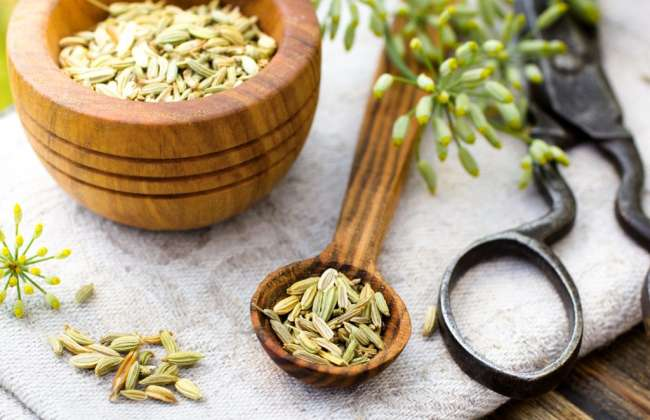 Fennel Seeds for Constipation