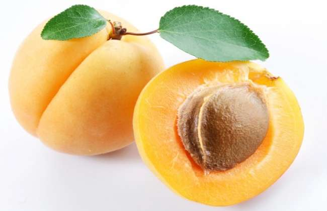 Apricot Seeds Cured my Cancer