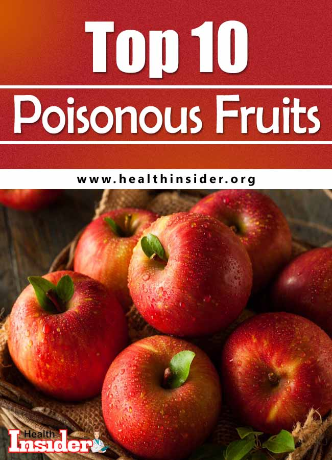 We have put together a list of the 10 poisonous fruit you have to be careful dealing with! #poisonousfruits #unhealthyfood #foodstoavoid