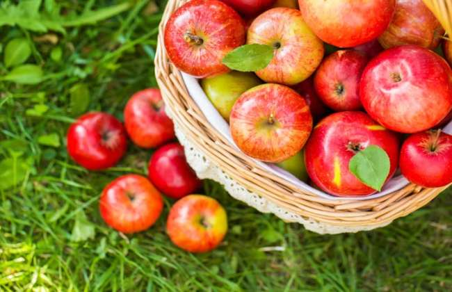2 Apples A Day Weight Loss