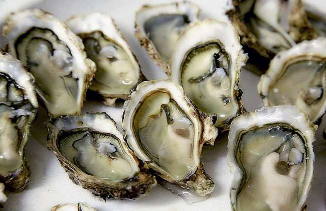 Yelp Oysters