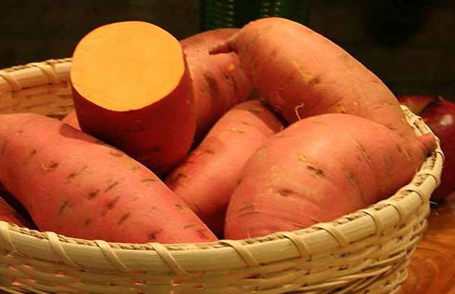 Vitamin A Retinol Food Sources