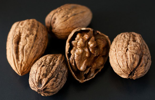 Best Nuts For Brain Power
