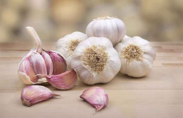 Garlic Help Build Up Breast Milk Supply