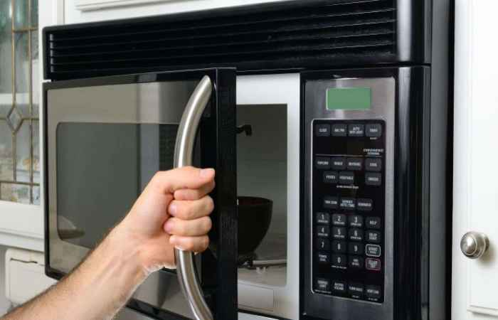 Microwaving the Toothbrush to Sterilize it