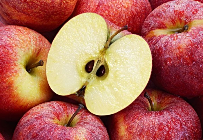 Apples and Lung Cancer